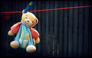 cách giặt gấu bông đơn giản tại nhà