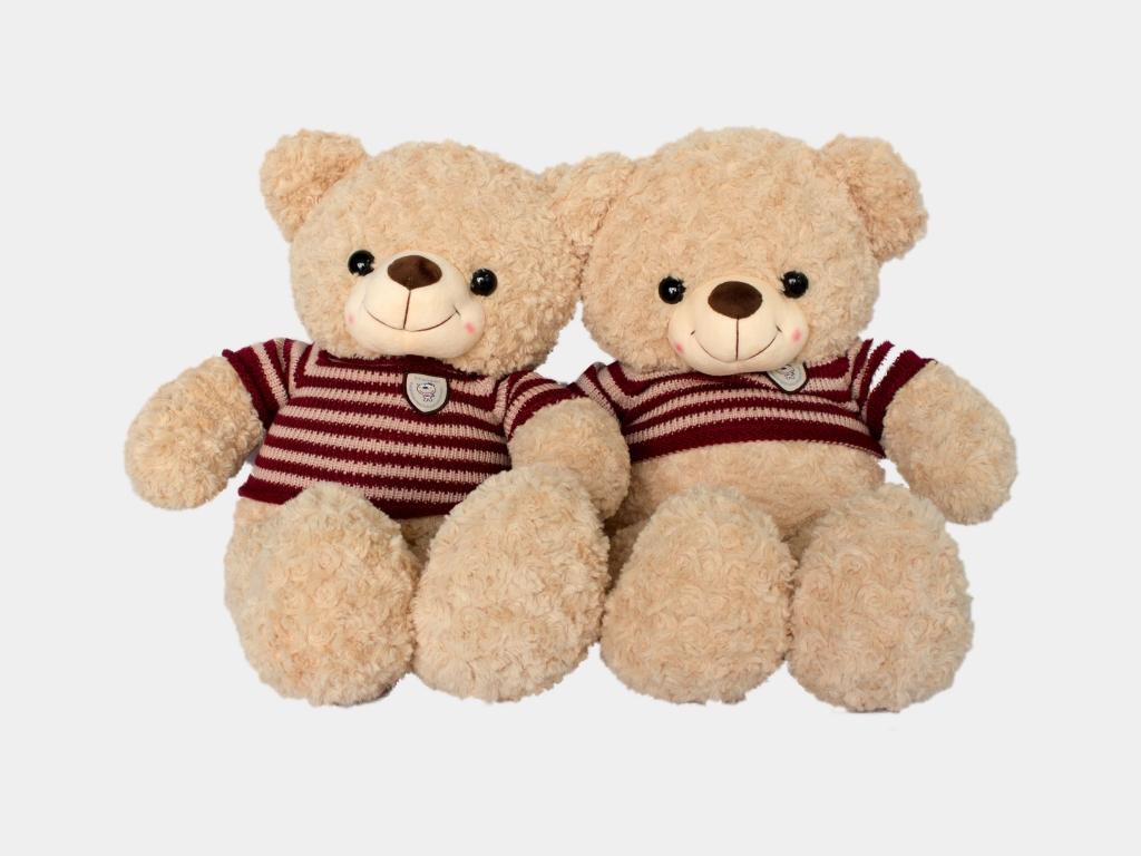gau-teddy-xoan-kem-len-5.jpg
