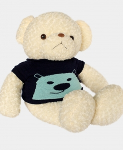 gau-teddy-xoan-trang-len-xanh-1-1.jpg